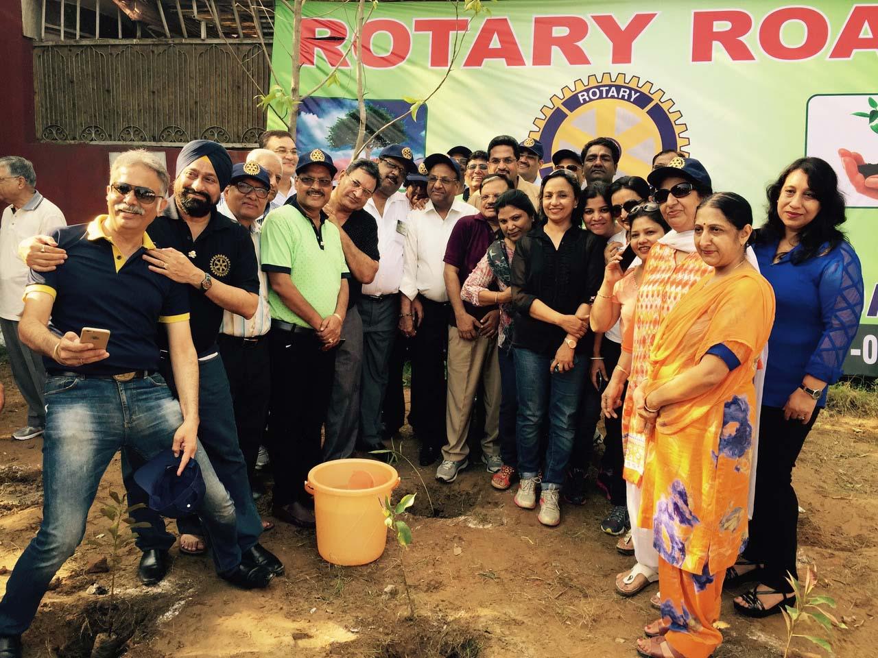 Roatry Plantation 3