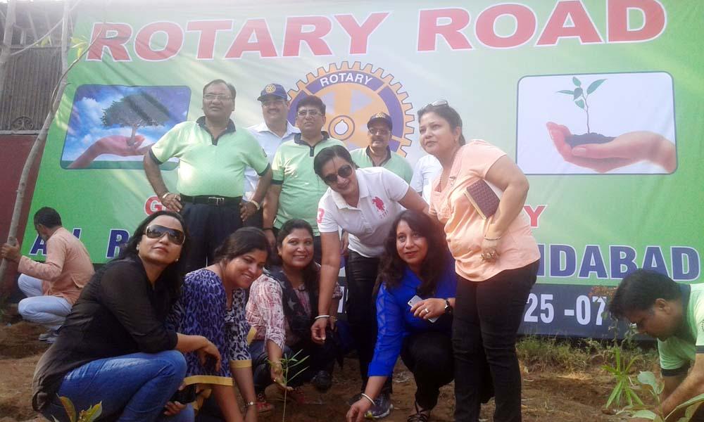 Rotary Plantation 14