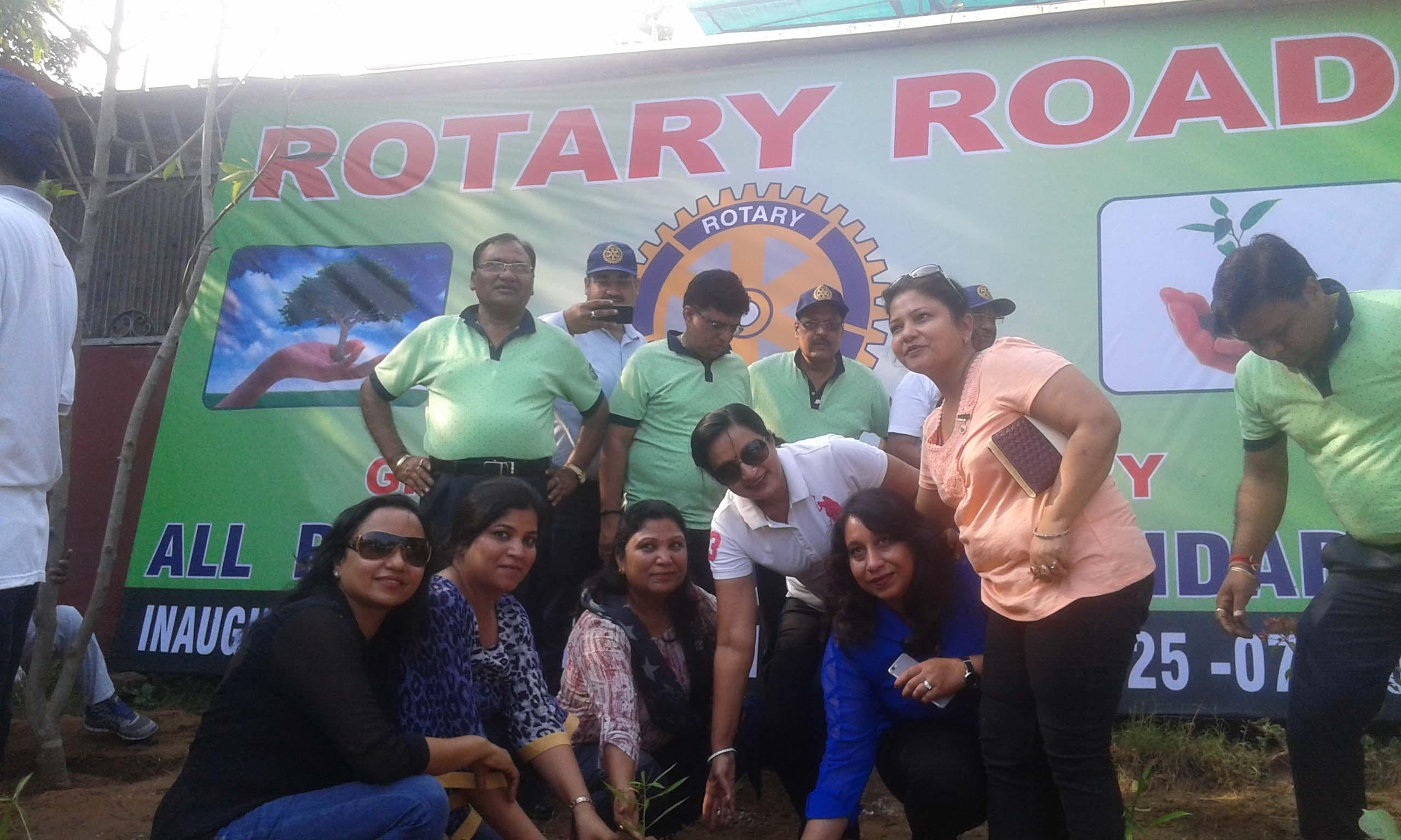 Rotary Plantation